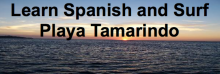 Learn Spanish and Surf in Costa Rica and Ecuador
