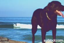 Ponto, April 04 - surfrip.com