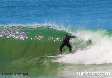 Photo: Lola Blake www.chicksticksbylola.com  Performance Surfboards for Girls