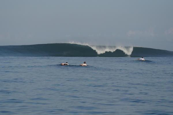 Waterways Nemberala Beach Resort Surf News Surfshot
